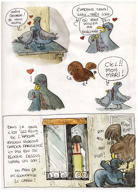 pigeonstory1.jpg